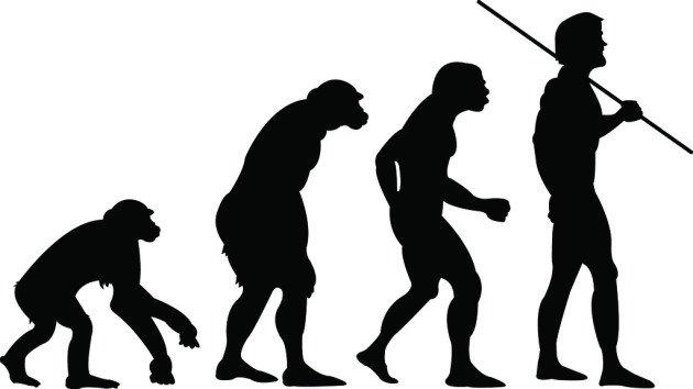 evolucao-raca-humana-antropologia